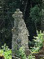 Svartnäs Nybruket ruin efter spiksmedja 3532.jpg