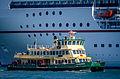 Sydney Ferry Alexander 1.jpg