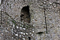 TRIM CASTLE - COUNTY MEATH (3139628428).jpg