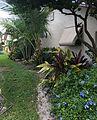 "Tamarac, FL, USA - panoramio - William ""Patrick"" Ma… (3).jpg"