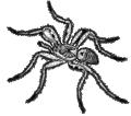 Tarantula 1 (PSF).png