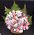Tatton Park Flower Show 2014 055.jpg