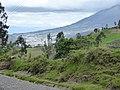 Taxopamba Ecuador 1046.jpg