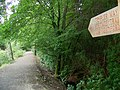 Templer Way, Stover Country Park - geograph.org.uk - 947775.jpg