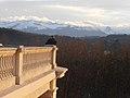 Terrasse du Pavillon des Arts de Pau 8.jpg
