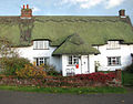 Thatched cottage on the village green (detail) - geograph.org.uk - 1594055.jpg