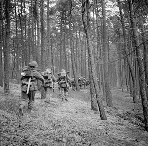 Operation Veritable - British infantrymen, possibly of the 53rd (Welsh) Division, advance through the Reichswald during Operation Veritable, 8 February 1945.