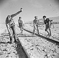 The British Army in North Africa 1942 E19813.jpg
