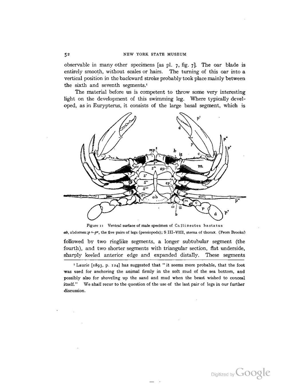 index imperium 1 pdf free