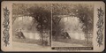 The Lullwater from Nethermead Circuit, Prospect Park, Brooklyn, N.Y, from Robert N. Dennis collection of stereoscopic views.png