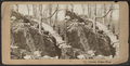 The Palisades, Hudson River, from Robert N. Dennis collection of stereoscopic views.png