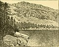 The Pine-tree coast (1891) (14592895918).jpg