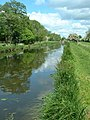 The Ripon Canal - geograph.org.uk - 114472.jpg