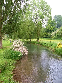 The River Coln - geograph.org.uk - 1898324