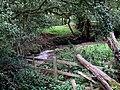 The River Lymn, Somersby - geograph.org.uk - 577394.jpg