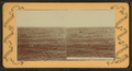 The Sea Bird's Paradise, off Pacific Coast, Cal., U.S.A, from Robert N. Dennis collection of stereoscopic views.png
