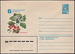 The Soviet Union 1980 Illustrated stamped envelope Lapkin 80-263(14278)face(Crataegus).jpg