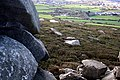The Western Shoulder of Carn Brea - geograph.org.uk - 354900.jpg