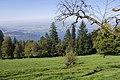 The Zugerberg overlooking Lake Zug - panoramio (39).jpg