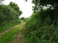 The road peters into a rough track - geograph.org.uk - 522041.jpg