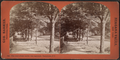 The road where Andre was captured, Tarrytown, N.Y, by Barker, George, 1844-1894.png