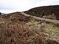 The track up Druim na h-Aibhne - geograph.org.uk - 393641.jpg