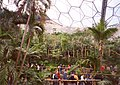 The tropical biome, Eden Project, St Blaise CP - geograph.org.uk - 655396.jpg