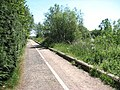 This way to Surlingham - geograph.org.uk - 1335039.jpg