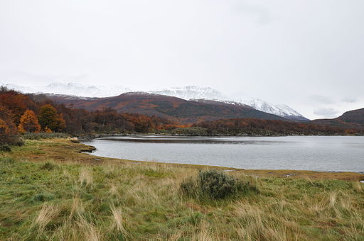 Tierra del Fuego National Park (8089459354)