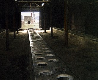 Latrine in the men's quarantine camp, sector BIIa, Auschwitz II, 2003 Toaletter pa auschwitz 2.jpg