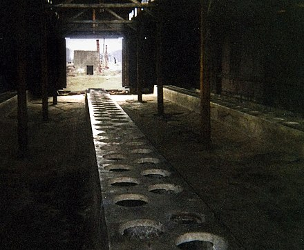Latrine in the men's quarantine camp, sector BIIa, Auschwitz II, 2003 Toaletter på auschwitz 2.jpg