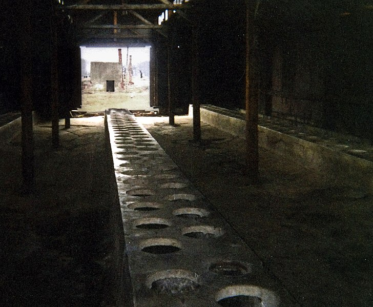 File:Toaletter på auschwitz 2.jpg