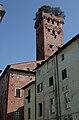 Torre-Guinigi.jpg