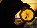 Total eclipse of the lemon (9736183646).jpg