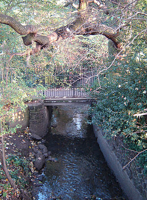 River Moselle (London) - The River Moselle visible above ground on its way through Tottenham Cemetery in November 2005. This now-modest stream once posed a significant flooding threat to the area.