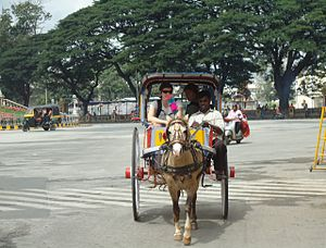 Tanga (carriage) - in Mysore (2010)