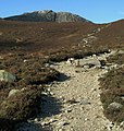 Towards Ben Crom - geograph.org.uk - 1139424.jpg