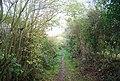 Track east from Little Worsham Farm - geograph.org.uk - 1578791.jpg