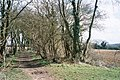 Tree-lined stretch of the Oxfordshire way - geograph.org.uk - 151406.jpg