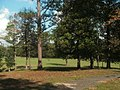 Trees and battlefield, Horseshoe Bend NMP.jpg
