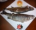 Trouts from Poznan.jpg