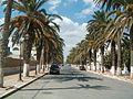 Tunisie Gouvernorat de Ben Arous Ez Zahra - panoramio.jpg