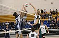 UFV men's volleyball vs Cap Nov 7 2014 21 (15759055151).jpg