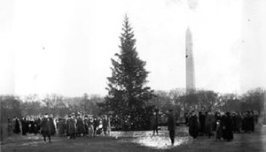 "National Christmas Tree (United States) - ""The first National Christmas Tree,"" lit on December 24, 1923, in the middle of the Ellipse outside the White House."