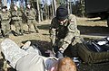 US medics train with international partners (10588658046).jpg