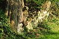 Ufenau 2011-07-25 18-02-28.JPG