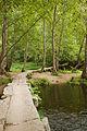 Umia River by Caldas de Reis, Galicia, Spain-3.jpg
