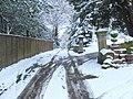 Upper Carman Road - geograph.org.uk - 1155175.jpg