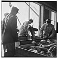 Vårfiske på Vardø - L0049 770Fo30141609280051.jpg