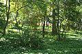 VIEW , ®'s - DigiGraf - Ð - ┼ , MADRID JARDÍN-PARQUE CAMPO del MORO - panoramio (13).jpg